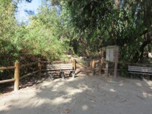 Benches and additional access to the trail