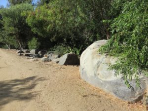Some rocks, including one with painted over graffiti