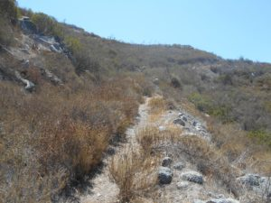 When I turned back on the Canonita Trail, looking back up the trail