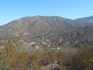 View into the canyon and up Rodriguez Mountain at the start
