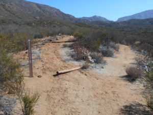 Up Rodriguez Mt or across the Horse Thief Trail?