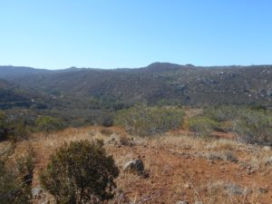 One View Along the Horse Thief Trail