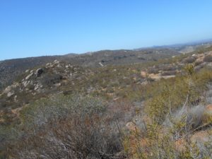 Another View along the Horse Thief Trail