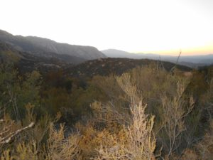 Looking ahead at the top of the switchbacks as the sunrise began