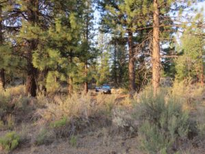 Boondocking Just South of Lava Beds