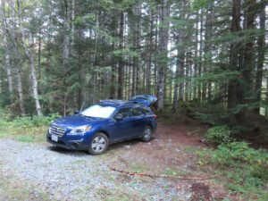 Car camped out in forest