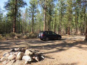 Car camping in a forest, with a firepit in front