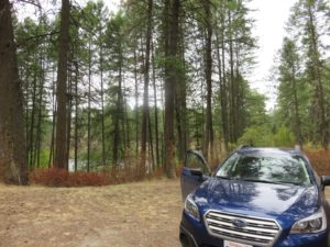 Car camped around trees and a lake