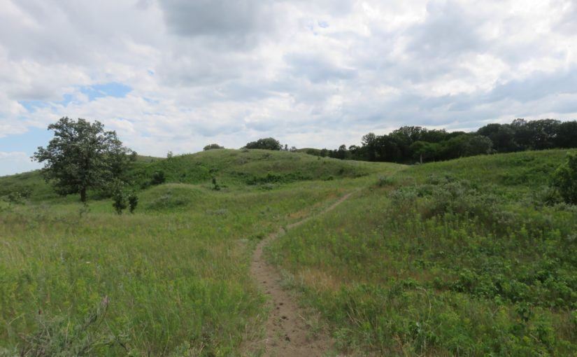 Hiking the Hankinson Hills Trail