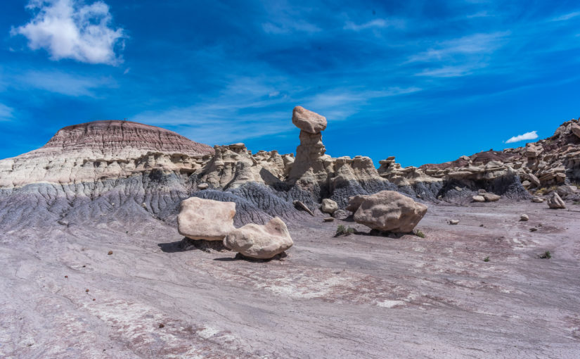Petrified Forest NP : Devils Playground